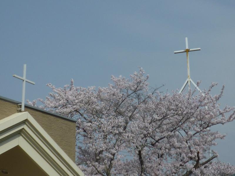 十字架と桜の花2018